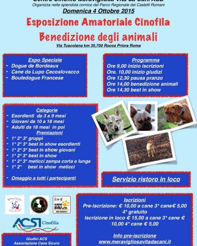 Expo Amatoriale e Benedizione Animali