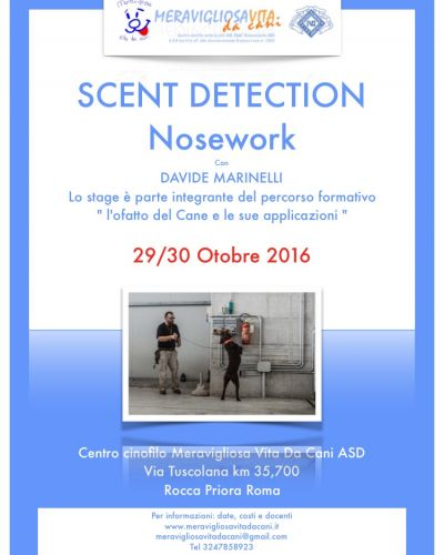 Scent Detection
