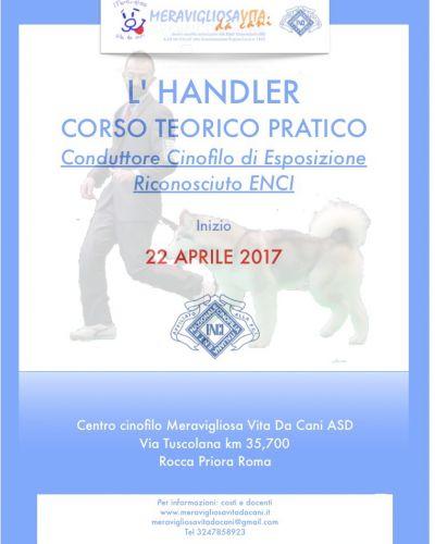 Corso Professional Handler