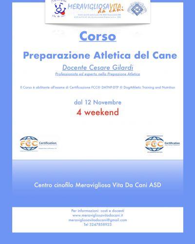 PREPARAZIONE ATLETICA DEL CANE