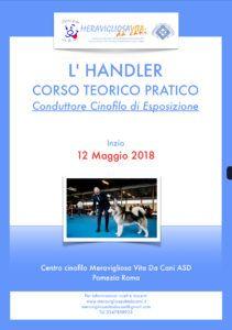 Corso Handler