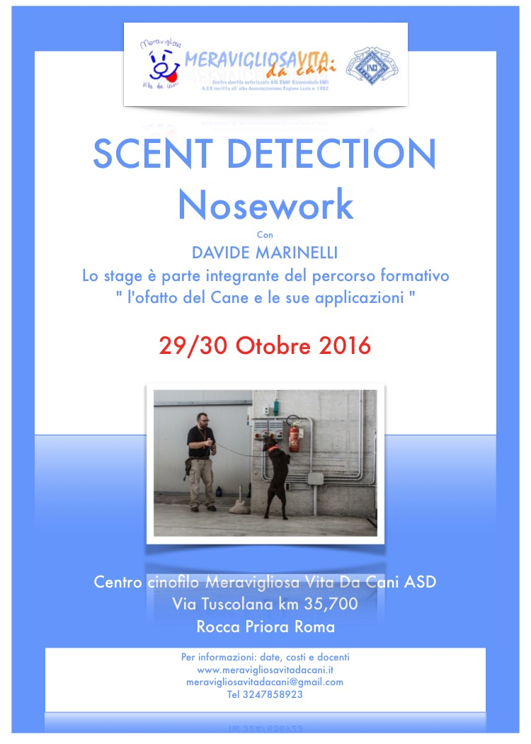 Scent detection