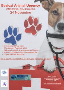 Basical Animal Urgency