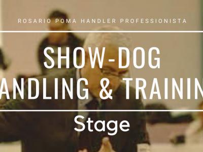Show Handling